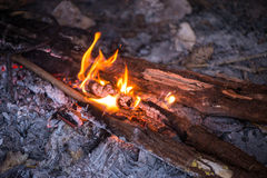 Fire in outdoors fire pit - Camp fire. Royalty Free Stock Photos