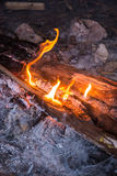 Fire in outdoors fire pit - Camp fire. Stock Images