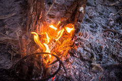 Fire in outdoors fire pit - Camp fire. Stock Photos