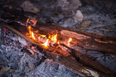 Fire in outdoors fire pit - Camp fire. Stock Photography