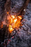 Fire in outdoors fire pit - Camp fire. Stock Image