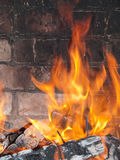 Fire over coals Stock Images