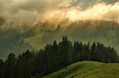 Fog over the mountains. Summer mountain landscape with the sky in sunset colors. Stock Images