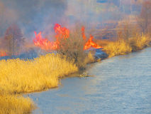 Fire over the river. Stock Images