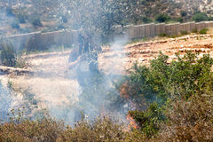 Fire in a Palestinian Field by Wall of Separation. Bil'in, Palestine - May 17th, 2013: A Palestinian person wearing a gas mask trying to put out fire caused by Stock Images