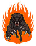 Fire Panther. Snarling panther jumped out of the fire Royalty Free Stock Photography