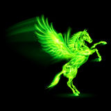 Fire Pegasus. Green fire Pegasus rearing up. Illustration on black background Stock Photo
