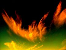 Fire phoenix. Phoenix (cloud in a shape of phenix Royalty Free Stock Image