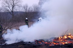 Fire. Stock Photo