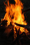 Fire on the picnic. The closeup of the fire on the picnic Stock Photos