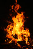 Fire on the picnic Royalty Free Stock Photos