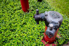 fire pipe in the garden for fire safety. standard safety of industrial and building. stock image