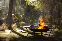 Fire-pit burning logs in clearing Stock Photography