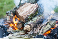 Fire place. With burning fire Stock Image
