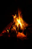 Fire. Royalty Free Stock Images