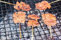 Fire pork close up  thai traditional foods Stock Image