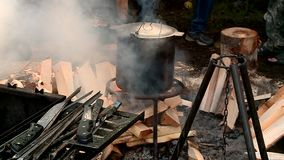 The fire pot wood flame. Wood fire pot tourism on the fire flame stock video footage
