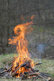 Fire rabbit. Fire is in shape of rabbit. Nice illusion stock image