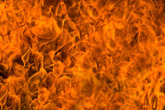 Fire rage. Furry of fire, texture, backgrounds, design elements series Royalty Free Stock Photos