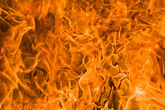 Fire rage Stock Images