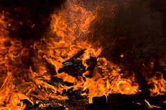 Fire rage Royalty Free Stock Photography