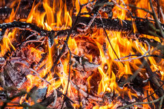 Fire and red embers Royalty Free Stock Image