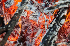 Fire and red embers Stock Images
