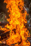 Fire. Red light fire burn at ground Royalty Free Stock Photography