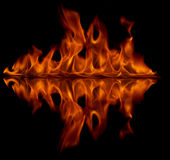 Fire reflection Stock Image