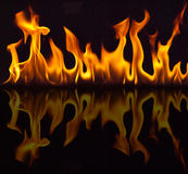 Fire with reflection. On a black background Royalty Free Stock Image
