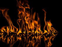 Fire. With reflection on black background Stock Photos