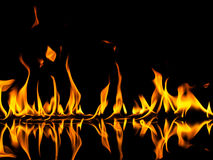 Fire. With reflection on black background Stock Photography