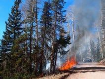 Fire Response Stock Photos