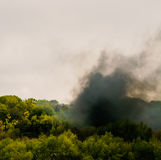 Fire rises above the forest, lots of black, dense smoke. The forest is burning royalty free stock photography