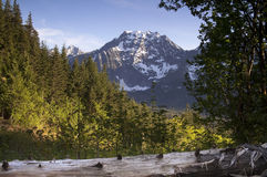 Fire Road Overlooks Big Four Peak North Cascades Mountain Range Royalty Free Stock Image