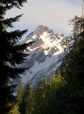 Fire Road Overlooks Del Campo Peak North Cascades Mountain Range Royalty Free Stock Images