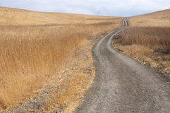 Fire road winds up a dry grass hill. On a sunny day Stock Images