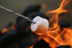 Fire Roasted Marshmallow Royalty Free Stock Photos