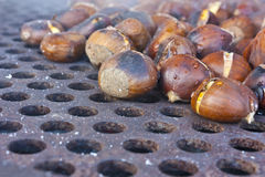 Fire roasting chestnuts Stock Images