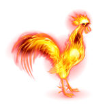Fire Rooster. Red Cock. Fire Rooster Symbol of the New Year by Chinese Calendar. Christmas Card New Years design on White Stock Images