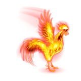 Fire Rooster. Silhouette of Red Cock. Fire Rooster Symbol of the New Year by Chinese Calenda on White Stock Images