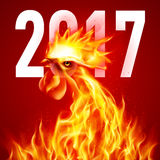 Fire Rooster. Symbol of the New Year by Chinese Calendar. Christmas Card New Years design on Red Royalty Free Stock Photos