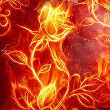 Fire rose. Fire flower on red background Royalty Free Stock Photos