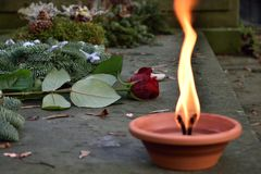 Rose and fire in cemetery royalty free stock image