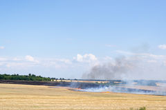Fire on a rural field Stock Photography