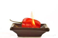 Fire and scotch bonnet peppers Royalty Free Stock Images