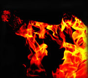 Fire shapes Stock Photography