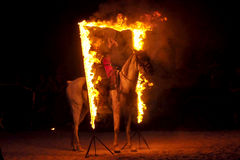 Fire show with horses Stock Images