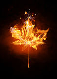 Fire sign - Canada Stock Photography