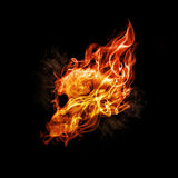 Fire skull. Stock Photos